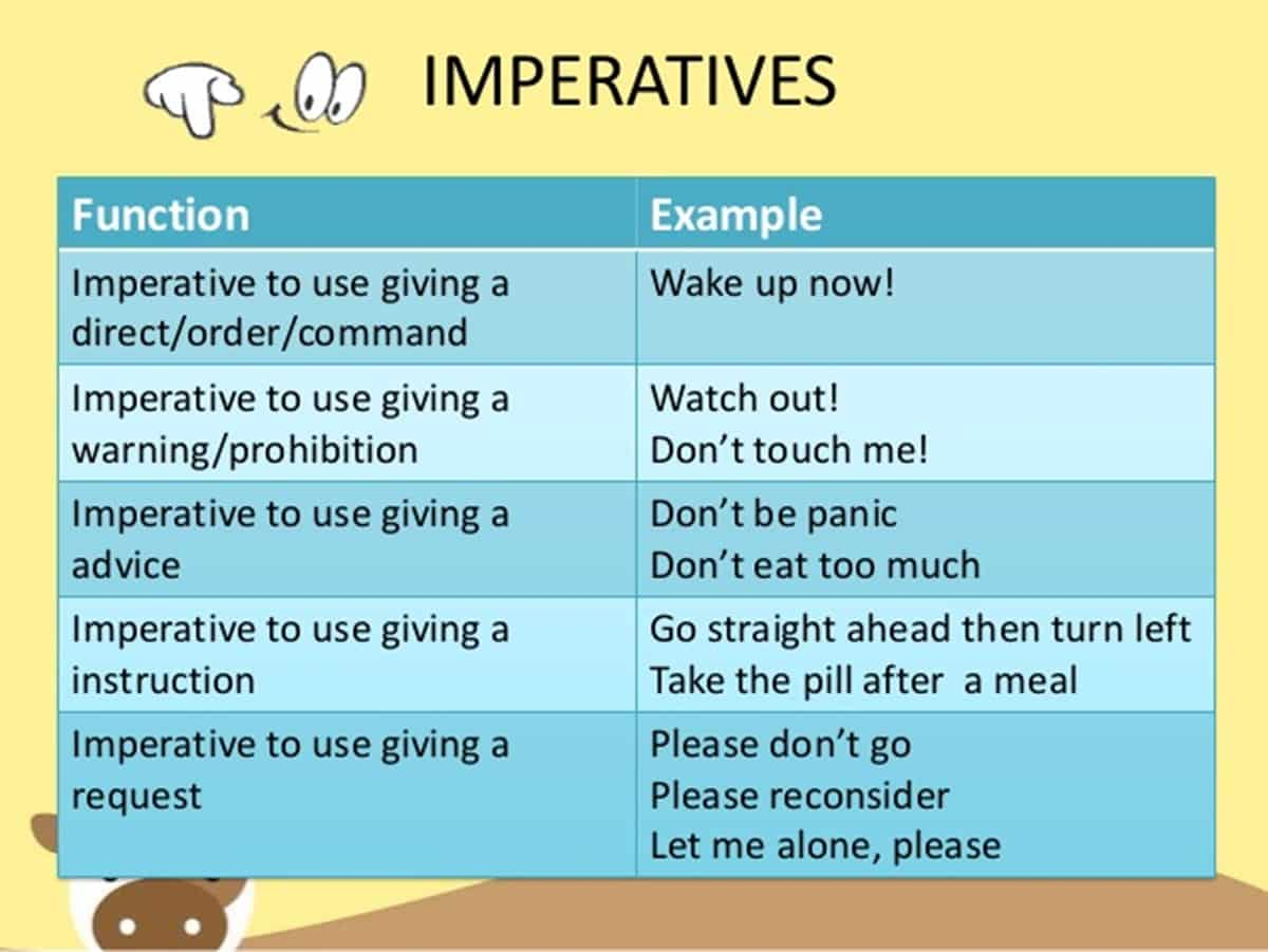 instruction meaning in english