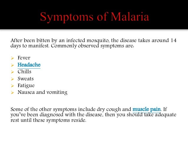 Malaria symptoms treatment and prevention pdf