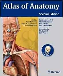 Atlas of anatomy gilroy pdf
