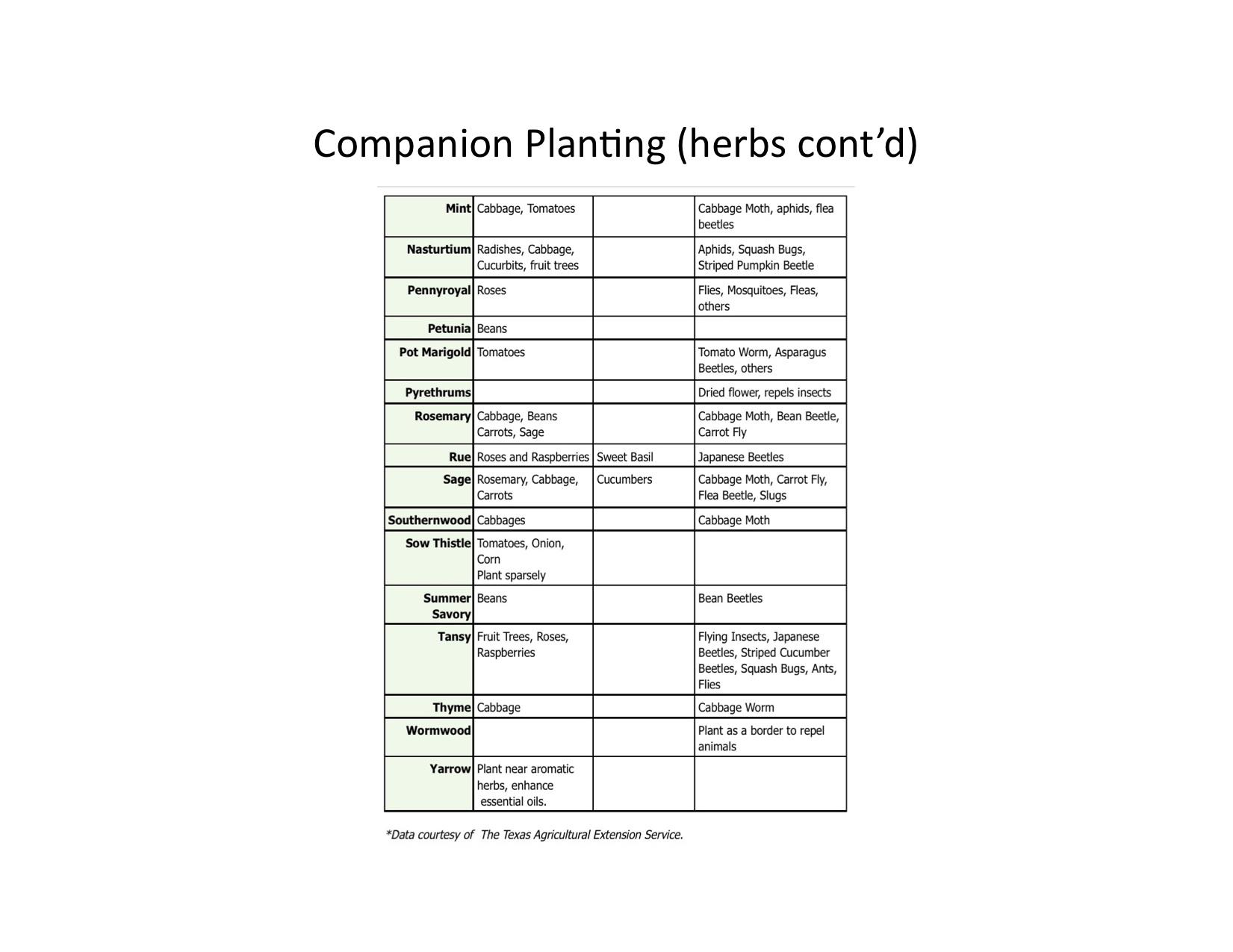 Create a servitor companion pdf