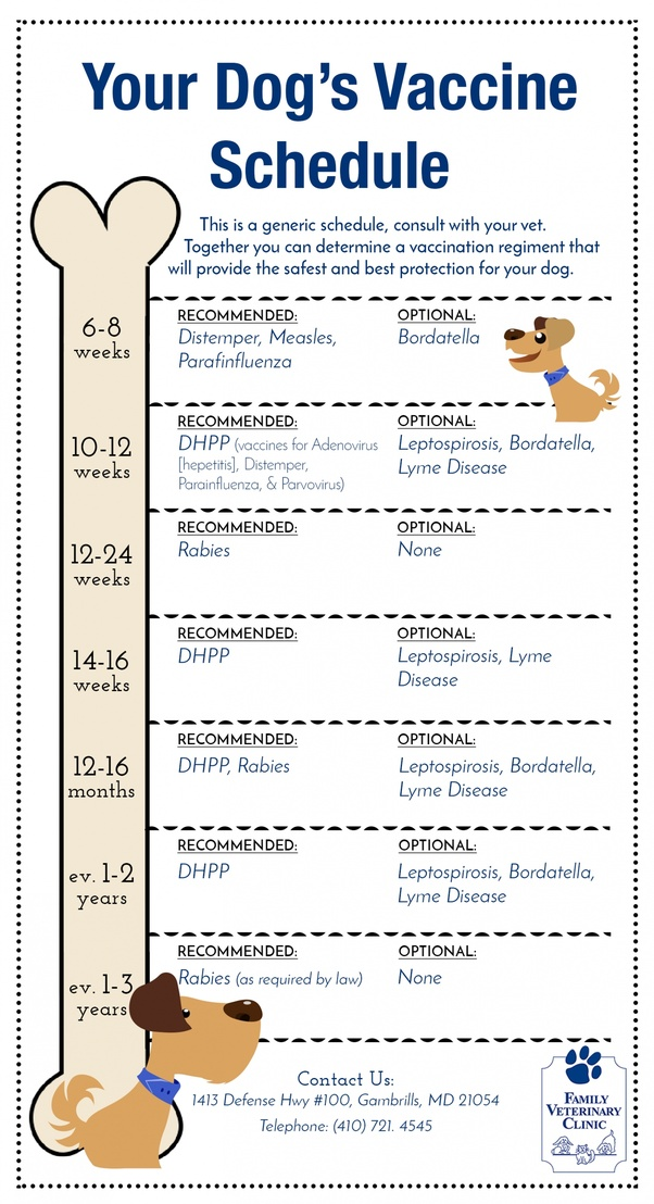 Puppy vaccination schedule chart pdf