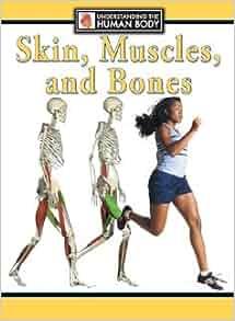 Human muscles steve parker pdf