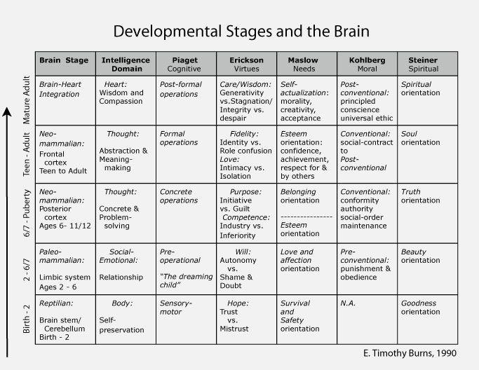 Looking forward through the lifespan developmental psychology pdf